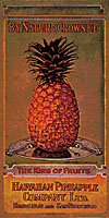 vintage Dole pineapple